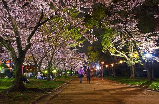 Osaka Castle Nishinomaru Garden.