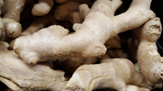 Ginger root or rhizome