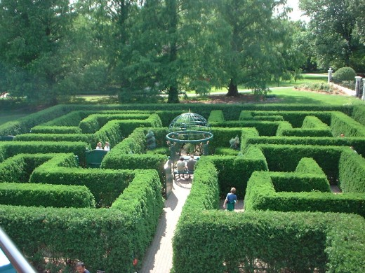 You can enjoy the funny experience of getting lost at these Botanical Gardens, located in St.Louis, Missouri.