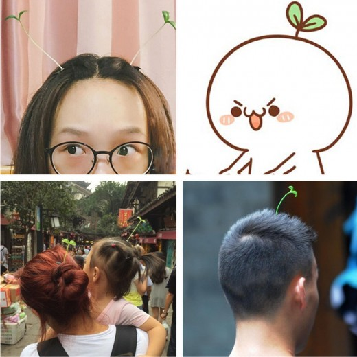 Sprout Hair Clips are Trending in Town