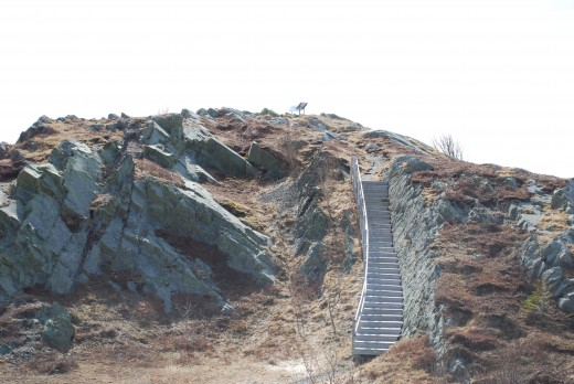 Stairs leading to the top of Gibbet Hill Lookout.