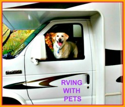How to Make RVing With Your Pets a Pleasure