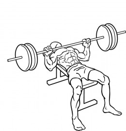 The bench press is regarded as an important exercise for recreational lifters and athletes alike, but is it overrated?