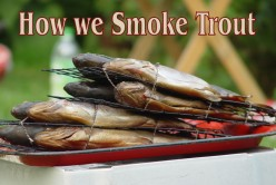 Trout - How to Smoke Your Trout in a Wood Burned Smoker