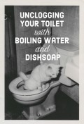 How to Unclog Your Toilet Without a Plunger or Crazy Chemicals