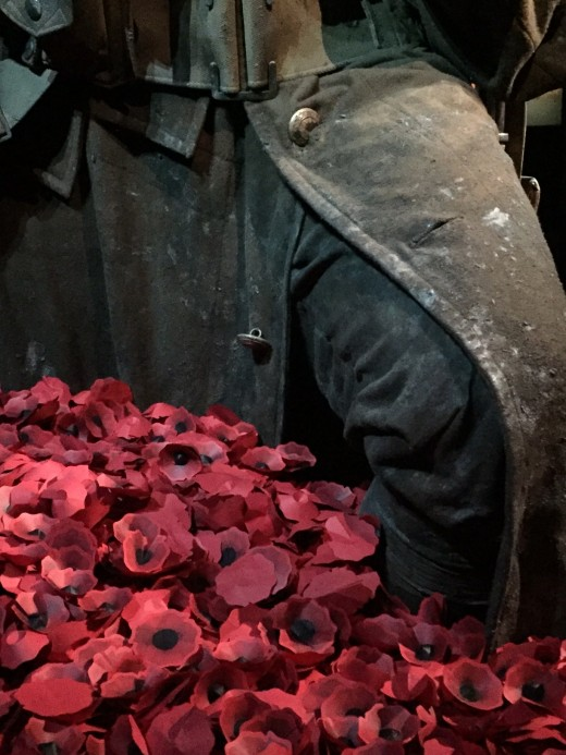 Poppies are a reminder of Anzac Day