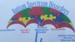 A Basic Outline Of All Autism Spectrum Disorders