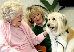 Pet Therapy Works Wonders for BPSD