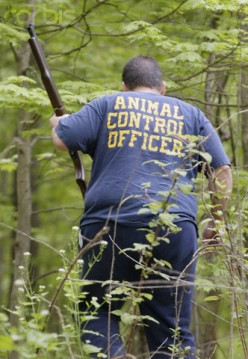 """An Animal Control Officer's job is not """"a walk in the park."""""""