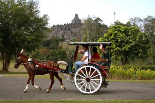Ride A Horse Cart