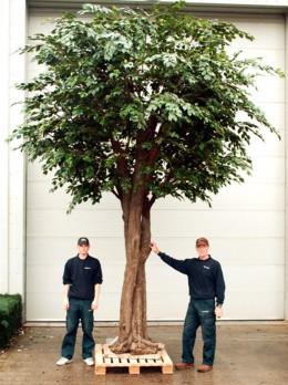 A fake tree.
