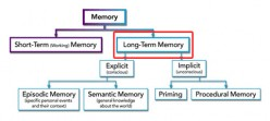Instruction for the Long Term Memory