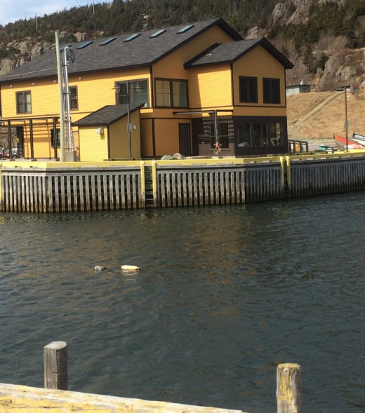 Historic Quidi Vidi Plantation, home to many local artisans, across from the parking lot of Mallard Cottage