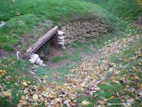 An original trench and dugout from WWI