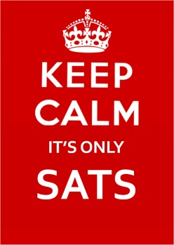 What's Up With The SAT Testing System?