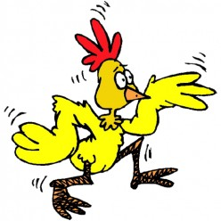A scared chicken also stands for anyone who acts like a coward.