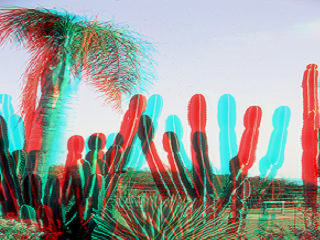The same polarized image turned into a two color anaglyph