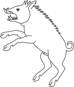 A razorback hog.