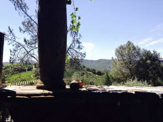 View from the tasting terrace at Kuleto Estate