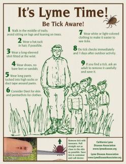 Lyme Disease May Awareness Month