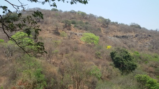 The Eastern Hill, Elephanta