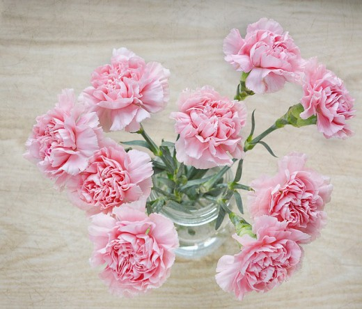 White or lightly colored carnations are flowers which take easily to dying.