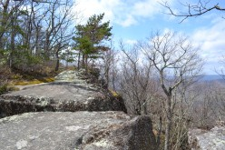Best Hiking in Virginia: Tinker Cliffs