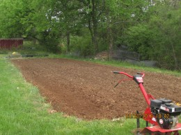 This is what my garden looked like this year after after a roto-tilling. This process for me takes a couple of weeks because the looser the soil is the easier it is to rake into rows and allow plants to spread their roots.