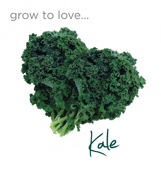 Try kale. You might love it!