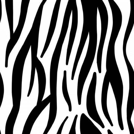 FIGURE 1 No two zebras have identical stripe patterns.