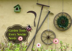 A Basic Guide To Essential Garden Tools For Beginners