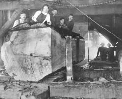 A Sawmill Worker's Lament