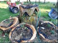 Minnesota Stump Gardening: Building that Strawberry Bed - Part 2