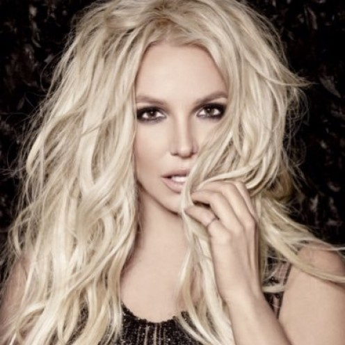 If all else fails, Britney could go to any tech college and learn how to style hair . . .including her own