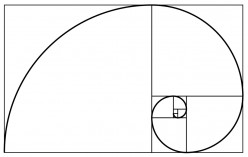 The Fibonacci Sequence - An Integer Sequence Appearing in Nature