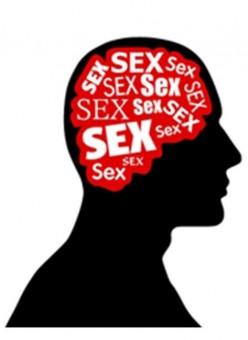 A Case Against Sex Being Addictive