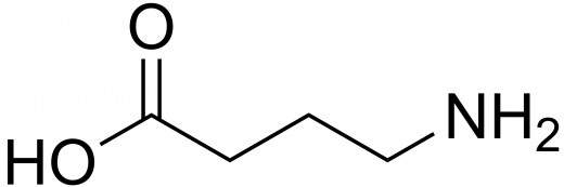 FIGURE 6 Gamma-aminobutyric acid is one of the most important neurotransmitters.
