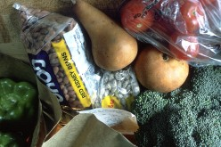 Let's Talk About Mandatory Community Service for Food Assistance