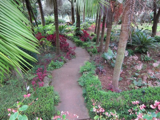 A beautiful walkway or pathway.