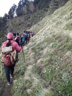 Why should you trek