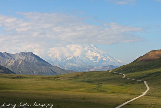 On a clear day. Take the bus tour into the National Park.  Go as far as possible for views of the Mountain, called McKinley and now officially Denali.