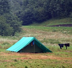 Have the Best Summer Camping Trip - Here's How