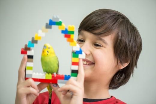Lego bird perch