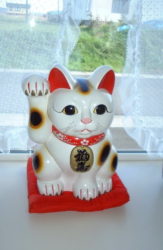 Traditional Maneki Neko are modeled after the Calico Japanese Bobtail