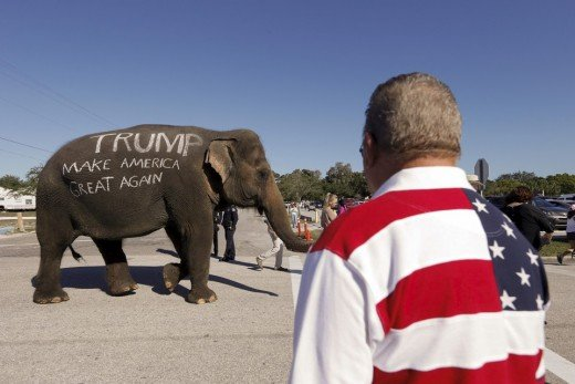 This elephant seems convinced, but will other reluctant Pachyderms get on board for Trump?