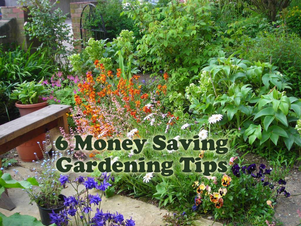 6 money saving gardening tips hubpages - Money saving tips in gardening ...