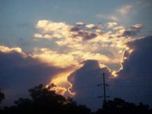 The creator's grace...