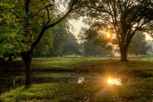 Wildpark, Dülmen, North Rhine-Westphalia, Germany