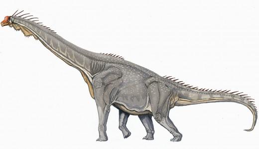 Brachiosaurus Dinosaur Reconstruction By Gornahob dmitrelae Public Domain