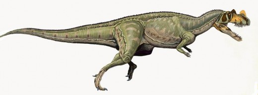 Ceratosaurus Dinosaur Reconstruction By Nekar Public Domain